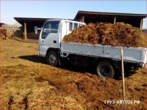 Японский грузовик с полным кузовом коровьего перегноя