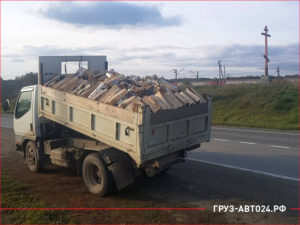 Японский грузовик на трассе с дровишками