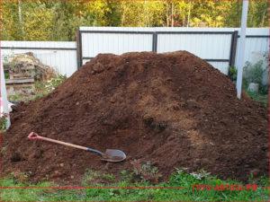 Лопата на куче навоза во дворе загородного дома