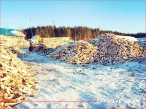 База по заготовке дров